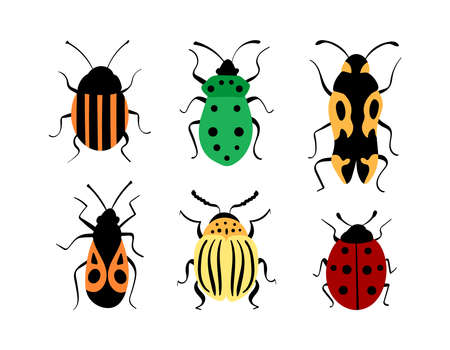 Beetles hand drawn collection. Cute decorative bugs isolated on white background. Vector illustration.