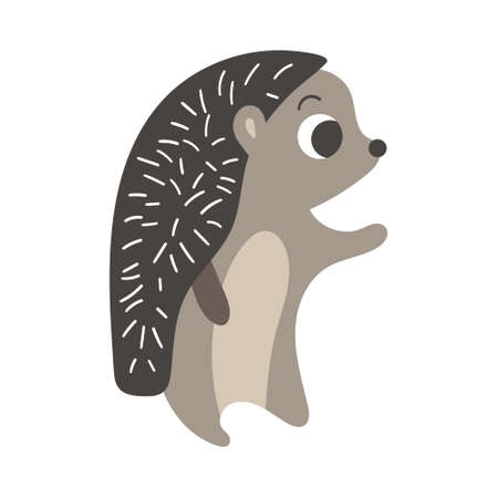 Cute cartoon standing hedgehog. Simple woodland character isolated on white background. Vector illustration.