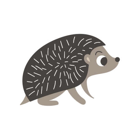 Cute cartoon hedgehog. Side view. Nice woodland character isolated on white background. Vector illustration. 矢量图像