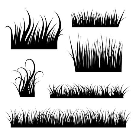 Grass black silhouettes collection. Nature borders. Vector illustration. Illustration