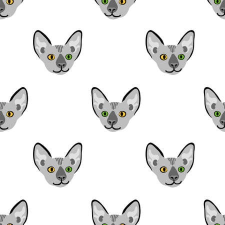 Seamless pattern with sphynx cat head. Funny animal with different eyes. Vector illustration.