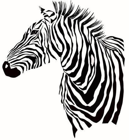 Animal illustration of zebra silhouette Stok Fotoğraf - 28258575