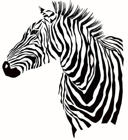 Dierlijke illustratie van zebra silhouet Stock Illustratie
