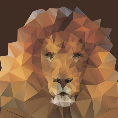 lion in the style of origami   Vector
