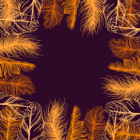 swelled: Set frame of colourful feathers. EPS background. Vector illustration