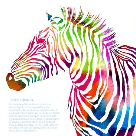 動物: 水彩斑馬動物剪影圖。向量