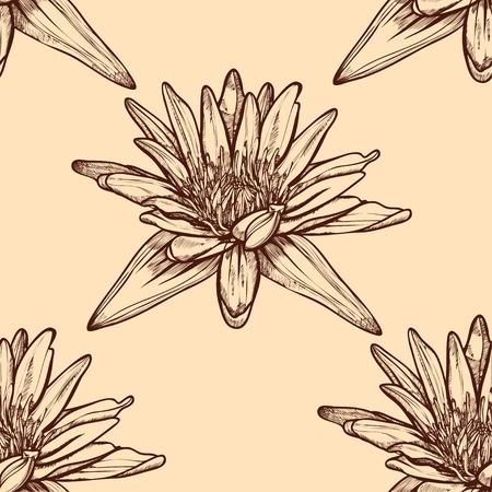 water lilies: Dibujado a mano nen�fares sin fisuras en un fondo. Vector