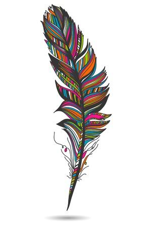 pluma blanca: Aislado de plumas multicolores. Con fondo blanco. Ilustraci�n vectorial Vectores