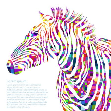 Animal watercolor illustration silhouette zebra. Vector illustration