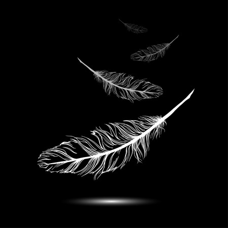 lightness: flying feathers with black background. EPS 10. Vector illustration