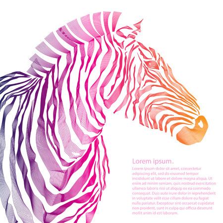 zebra: Ilustración animal de la silueta del vector de cebra. EPS Vector Vectores