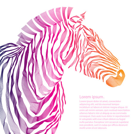 Animal illustration of vector zebra silhouette. EPS Vector Illustration