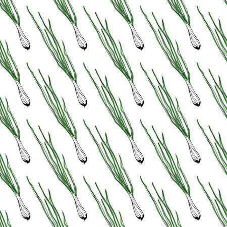 green onion: seamless background with green onion. illustration