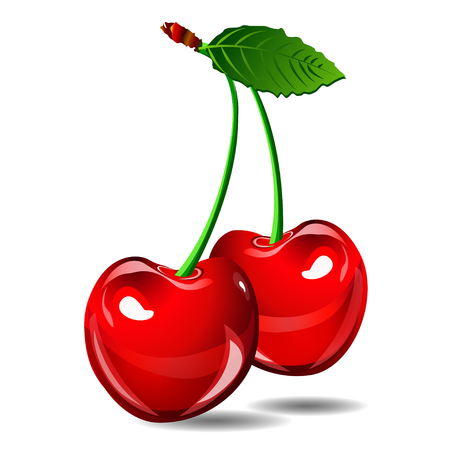 cherry: Cherry vector berry isolate on white background. EPS illstration