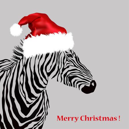 zebra stripes: Animal illustration of vector zebra silhouette with christmas hat. EPS Illustration