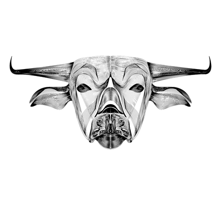Vector image of an outline  cow on white background Çizim