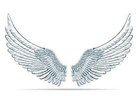 Schets illustratie van de vleugels op een witte achtergrond. Vector