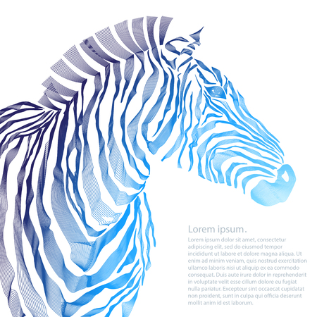 animal silhouette: Animal illustration of vector zebra silhouette. illustration Stock Photo