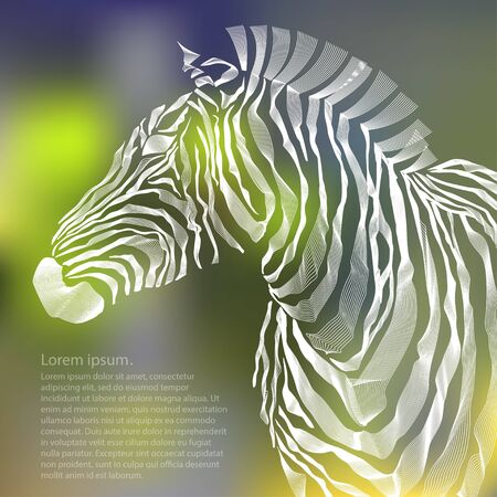 strip structure: Animal illustration of vector zebra silhouette. illustration Stock Photo