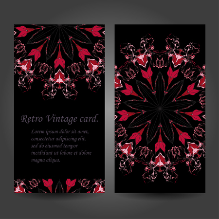 creation of sites: Set retro business card. Vector background. Card or invitation. Vintage decorative elements. Hand drawn background. Islam, Arabic, Indian, ottoman motifs.   illustration