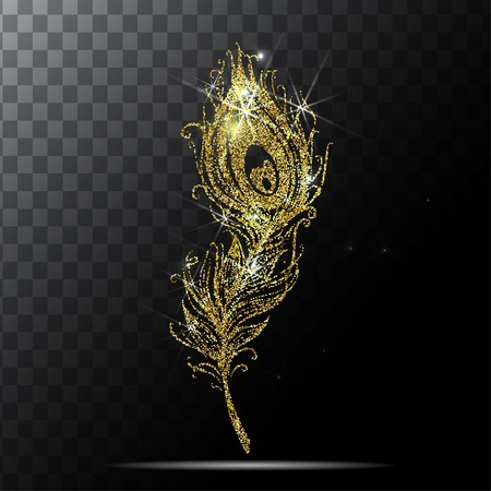 peacock feather in transparent background vector.