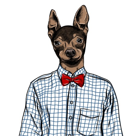 Hand Drawn Fashion Illustration of dressed up english Toy Terrier, in colors.