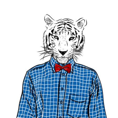 dressed: Hand Drawn Fashion Illustration of dressed up tiger, in colors. Vector Illustration