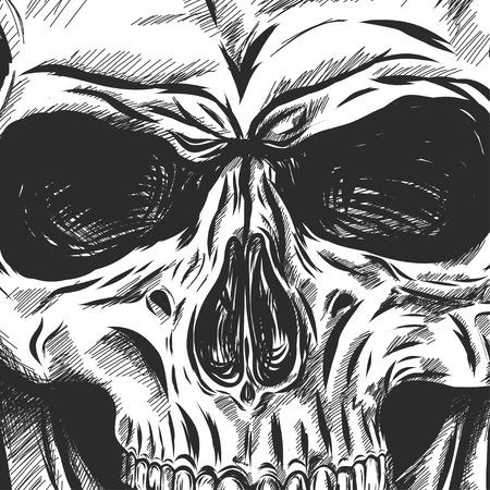 Main crâne d'anatomie dessinée avec des tons différents et des lignes. Vecteur Banque d'images - 60999092