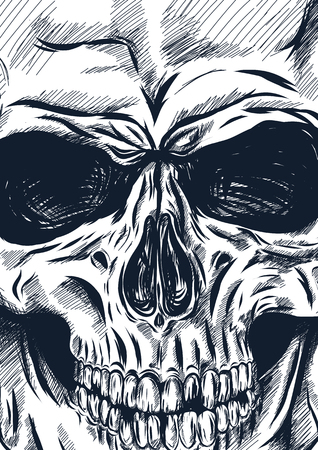 tones: hand drawn anatomy skull with different tones and lines. Vector
