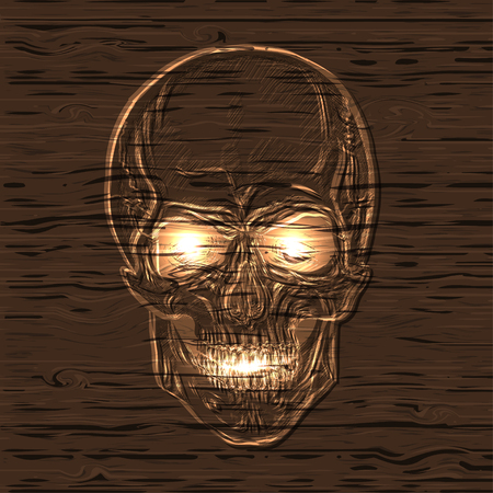 hand drawn anatomy skull with different tones and lines wooden texture. Illustration