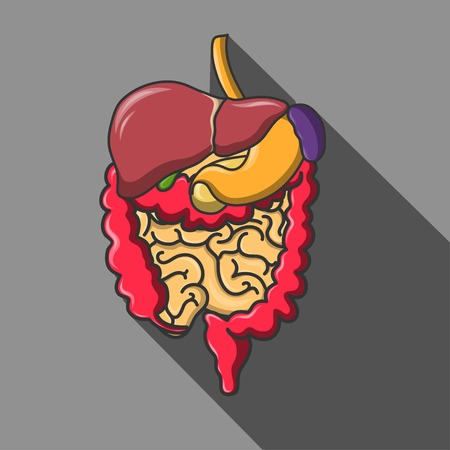 small intestines: Vector human organs icon set illustration