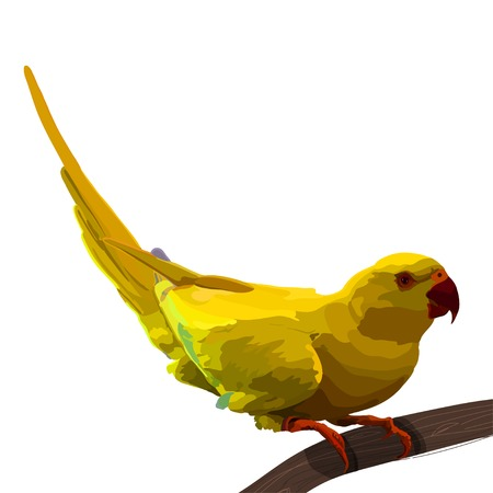 spread wings: Yellow tropical parrot spread wings and tree colorful sitting realistic vector.