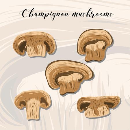 champignon: Fried champignon mushrooms on colourful background. EPS