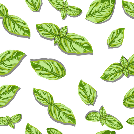 subtly: spice basil leaves seamless pattern on a background. Vector Illustration