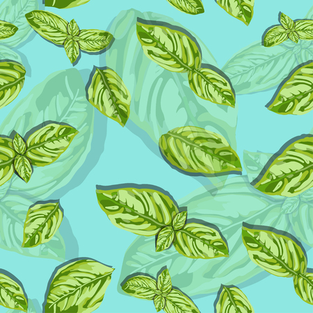 spice basil leaves seamless pattern on a background. Vector Illustration