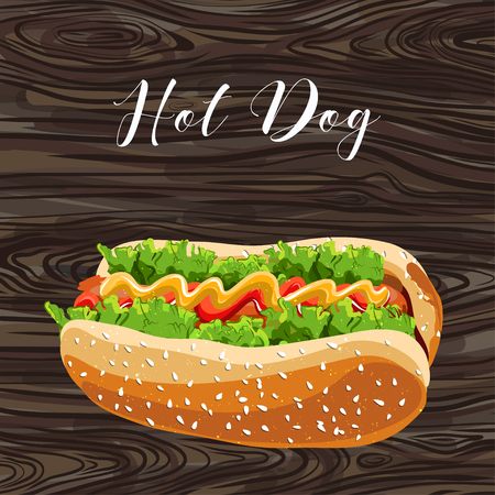 hot dog with green salad and sausage on background. vector. Illustration