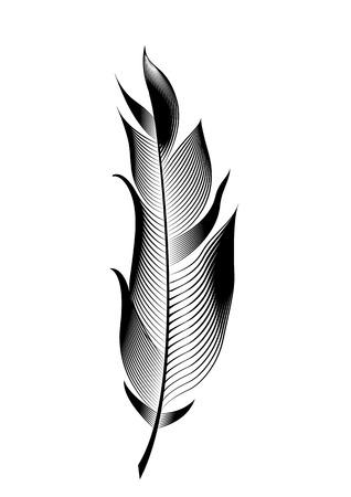 Pluma de pájaro estilizada del vector. Objeto lineal para decoración. Ilustración de vector