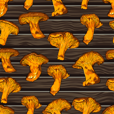 paper background: vector illustration of various fungi Chanterelle.