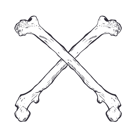 skull and crossed bones: Crossed bones hand drawn sketch. Illustration