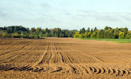 tillage: autumn tillage field in September Stock Photo