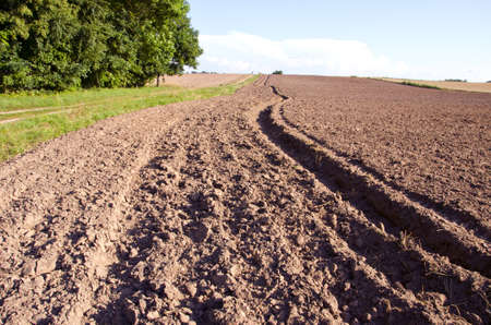 tillage: summer end tillage in the farm field
