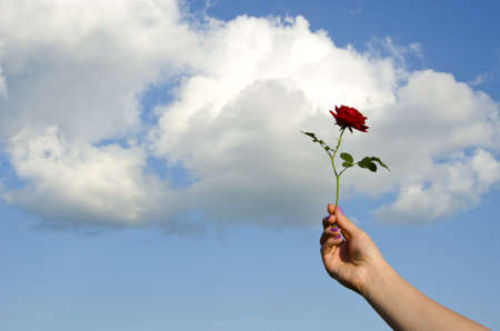girl hand holding red rose and sky clouds Stock Photo - 12759554