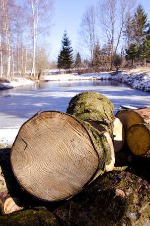fir firewood in the winter farm photo