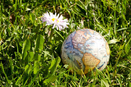 earth globe on spring grass and flower photo