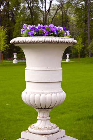 spring flowers in old manor park vase photo