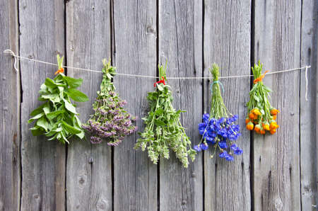 various medical herbs on old wooden farm wall