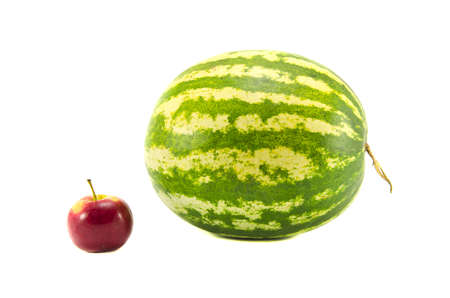 isolated on white background water melon and red apple Stock Photo - 15120758