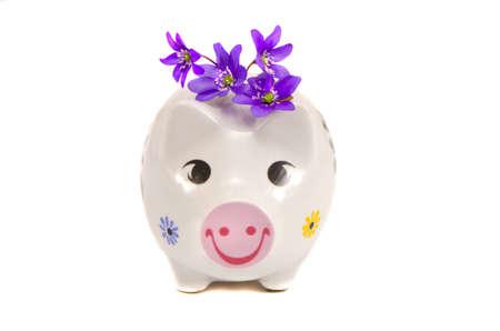 fondos violeta: divertida hucha con la primavera las flores violetas aisladas en blanco