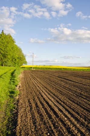 agriculture industry: plowed farm field in spring time
