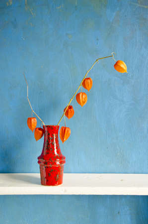 red ceramic vase with dry husk tomato on blue background photo